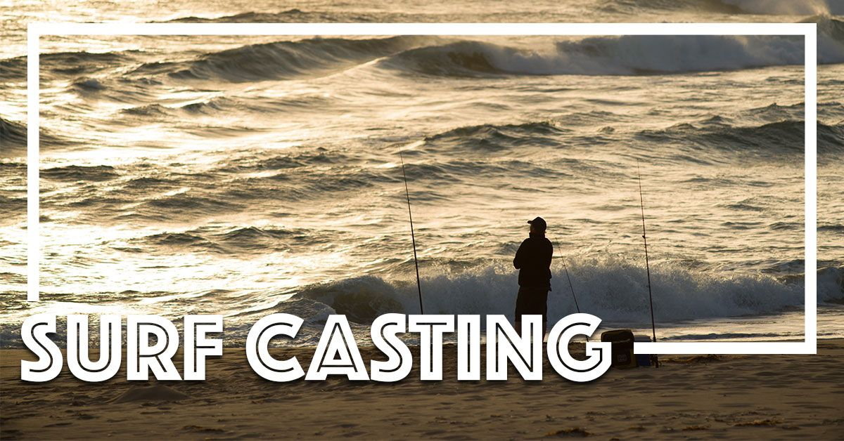 How to enjoy epic fall fishing on topsail island for North carolina surf fishing license