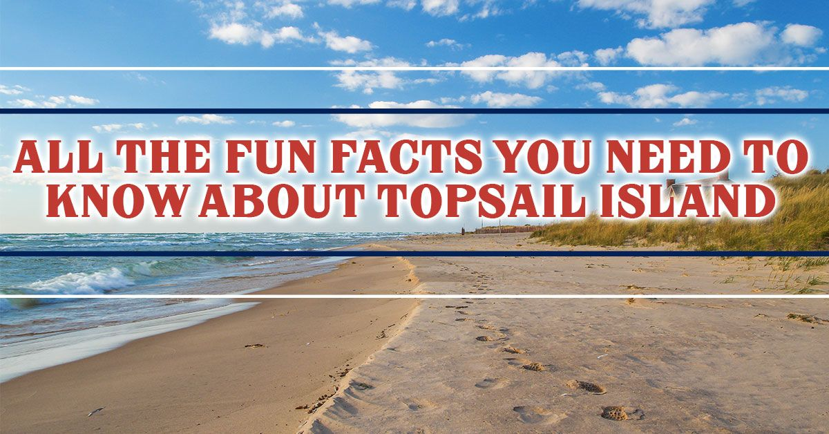 all-the-fun-facts-you-need-to-know-about-topsail-island
