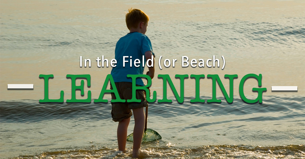 In the Field (or Beach) Learning