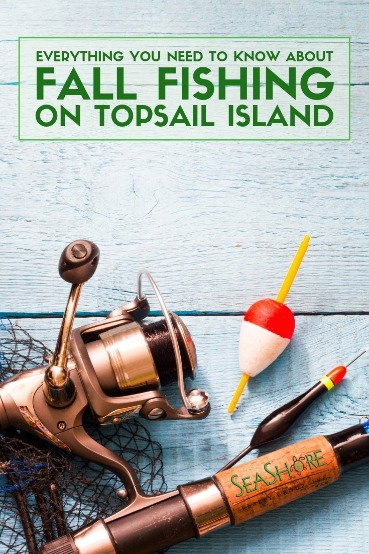 Everything You Need to Know About Fall Fishing on Topsail Island | Seashore Realty