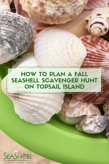 How to Plan A Fall Seashell Scavenger Hunt on Topsail Island | Seashore Realty